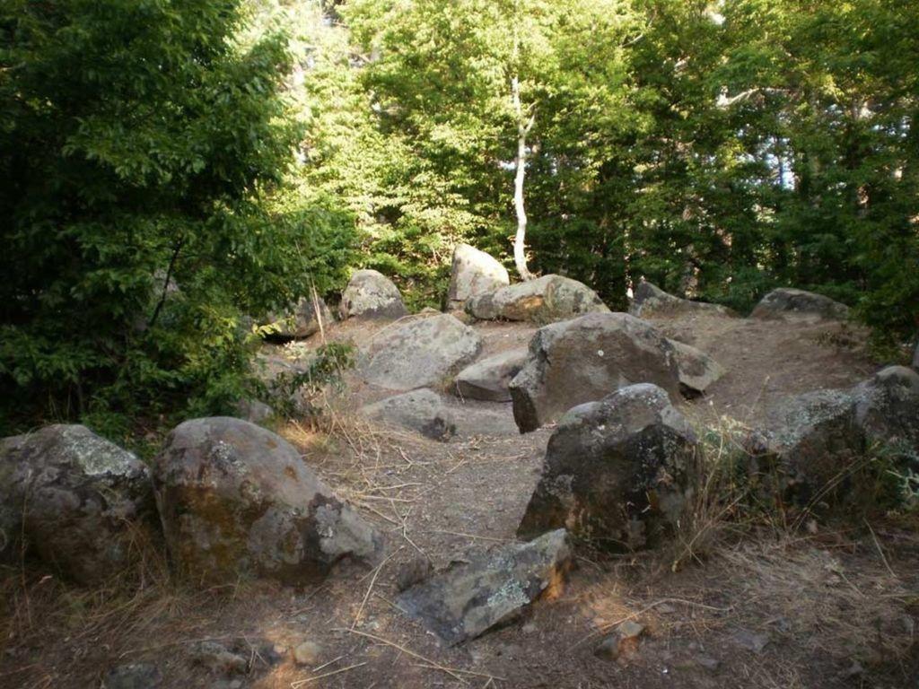 Урочище славится еще и пещерой со светящимся мхом, а из камней прорастают деревья