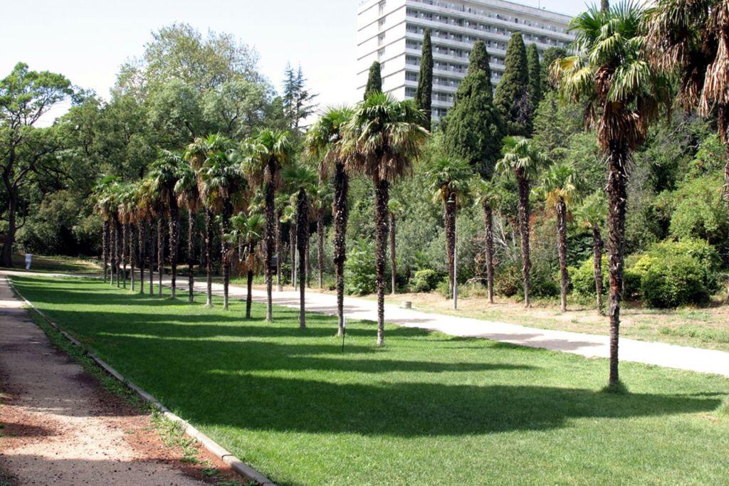 В настоящее время парк признан объектом парковой культуры особого значения
