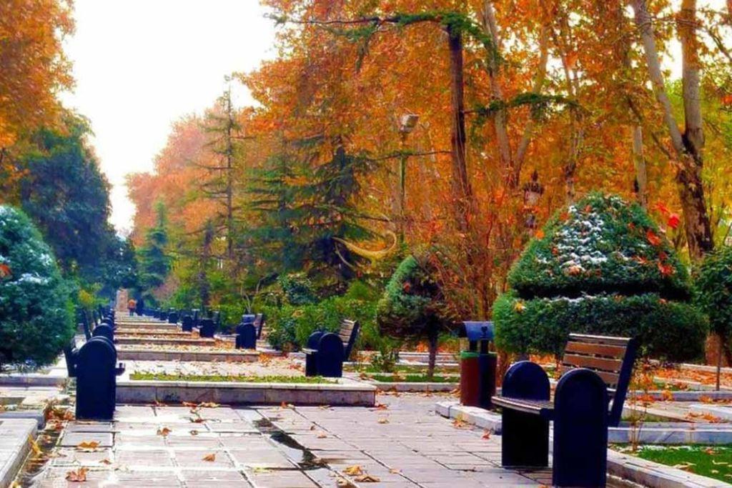В этом парке около 120 видов деревьев, кустарников и фруктовых деревьев, а в конце парка Меллат был установлен кинотеатр