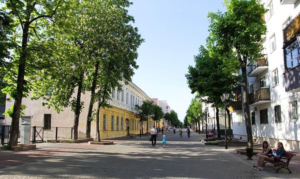 Пешеходная улица Суворова