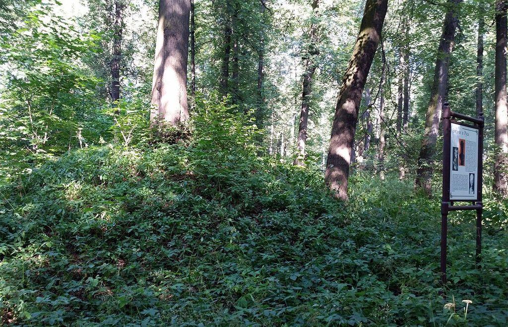 Племена вятичей имели свои погребальные сооружения, которые остались по сей день